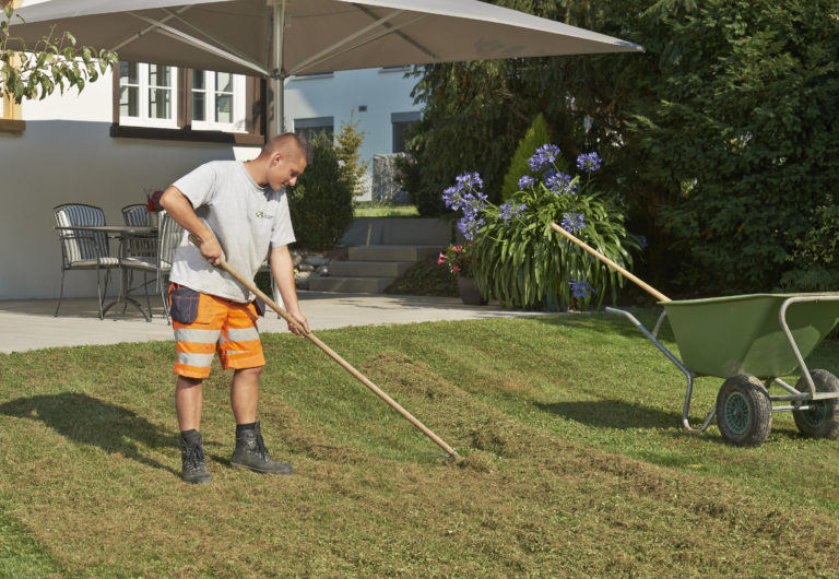 Pflegen Rasenpflege