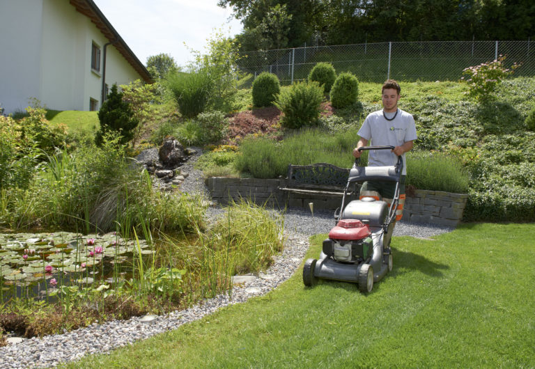 Service Rasenpflege