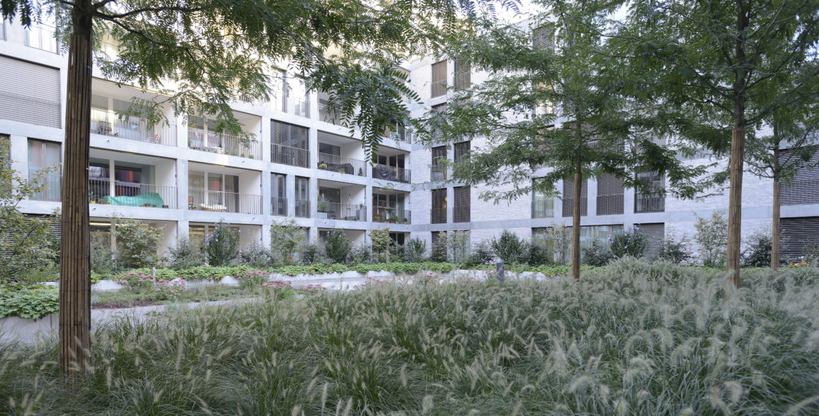 Bepflanzung Innenhof Winterthur